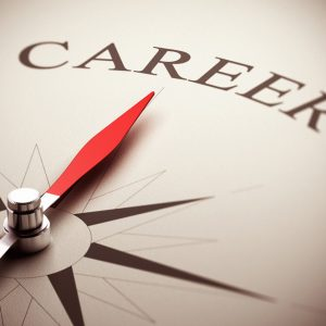 Career and Finance Consultations